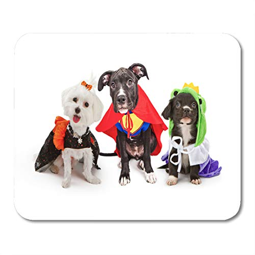 Emvency Mouse Pads Three Cute Little Puppy Dogs Dressed Up in Halloween Costumes Including Witch and Frog Prince Mousepad 9.5