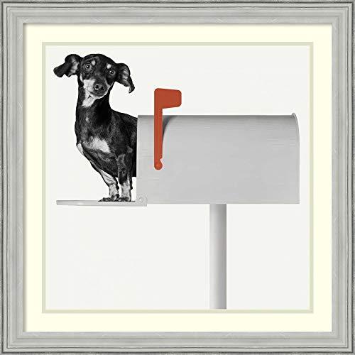 Framed Wall Art Print Youve Got Mail by Jon Bertelli 27.00 x 27.00