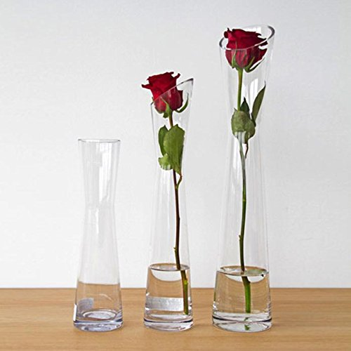 Hosley Florero Glass Vase, 11.75'' High. Ideal Gift for Wedding, Floral/Floor Vase, Party, Home Decor, Office, Spa 18 K