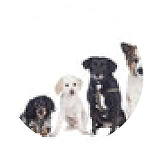 alfombrilla de ratón Seis perros mestizos en una fila - grupo de perros - ronda - 20cm