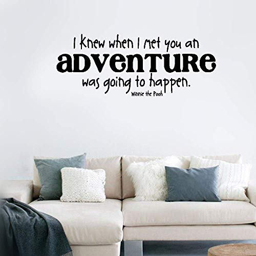 Quotes Vinyl Wall Art Decals Saying Words Removable Lettering I Knew When I Met You an Adventure was Going to Happen for Nursery Kids Room -
