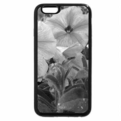 iPhone 6S Plus Case, iPhone 6 Plus Case (Black & White) - Pink Petunias in my garden 12