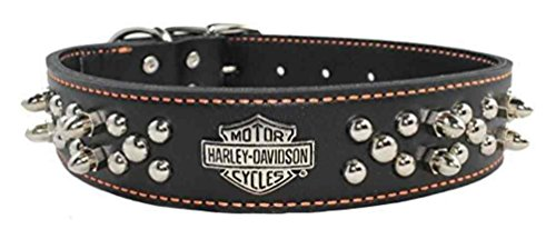 Harley-Davidson 1.5 in. Adjustable Double Row Spiked Premium Dog Collar - 26 in. (Harley Davidson Leather Collar)