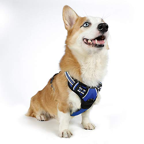 Rabbitgoo No Pull Dog Harness with Handle Adjustable Dog Padded Harness Reflective Pet Vest Harness for Outdoor Activities (Blue, M)