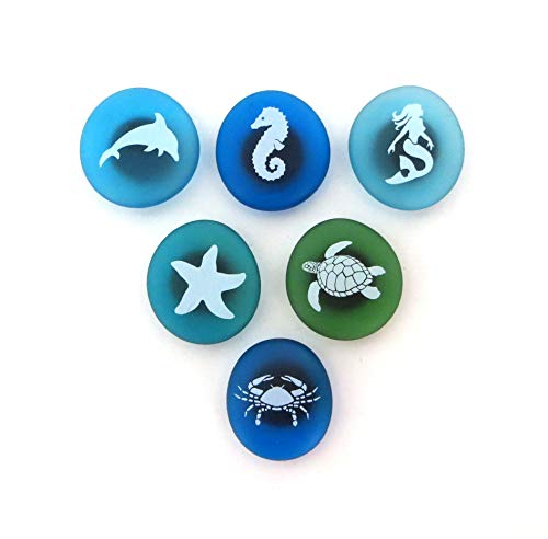 The Mermaid's Message Sea Life Magnets: Frosted Sea Glass Stones with Pictures of Creatures of the Sea, Attached To Super-Strong Magnets. By Lifeforce Glass.