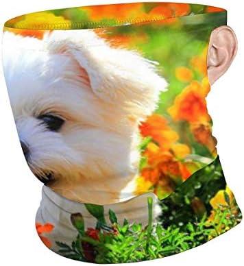 フェイスカバー Uvカット ネックガード 冷感 夏用 日焼け防止 飛沫防止 耳かけタイプ レディース メンズ Shih Tzu