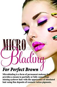 Poster P-700 Microblading Great Eyebrows Posters Nail Salon Mesh Vinyl