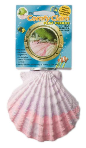 Polly's Comfy Clam Bird Perch, Large (Perch Products)