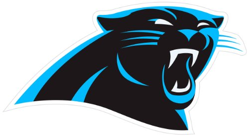 NFL Carolina Panthers 8