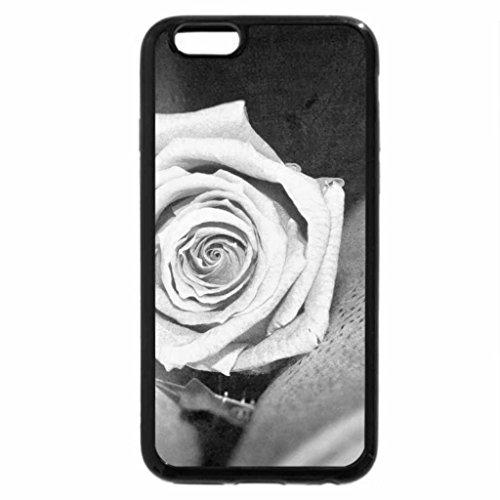 iPhone 6S Plus Case, iPhone 6 Plus Case (Black & White) - Grunge Rose