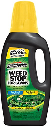 spectracide-weed-stop-for-lawns-concentrate-hg-96392-32-fl-oz