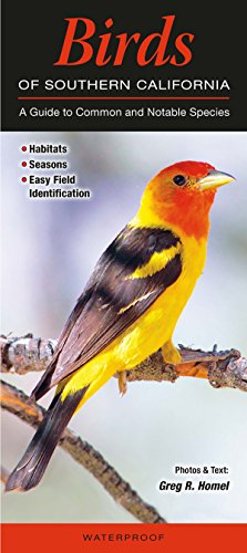 Birds of Southern California: A Guide to Common & Notable Species (Quick Reference ()