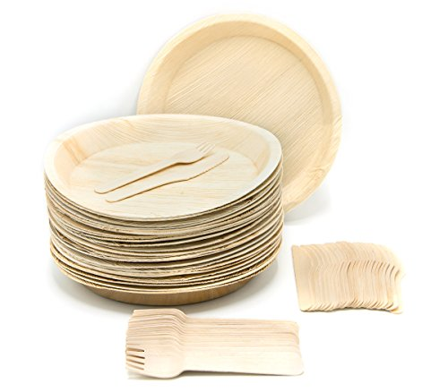 Eco-Friendly Disposable Dinnerware Set of 75 Party Supplies: Large 10