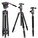 Neewer 64 inches/162 centimeters Camera Tripod Monopod with 360 Degree Ball Head,Quick Shoe