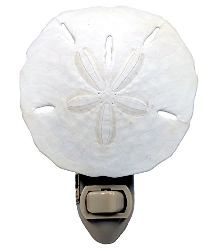 Natural Seashell Night Light Plug Includes Light Bulb - 3 Inch White Sand Dollar - Nautical Natural Seashell Beach Home (Hall 4 Light Bath)