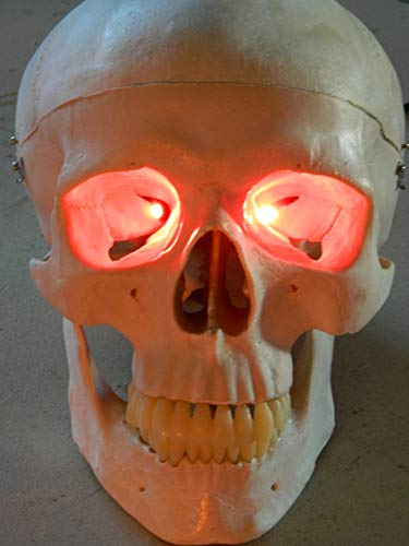 24 inch, Battery Operated, Red Led Eyes For Masks, Skulls and Halloween Props ()