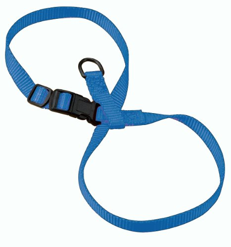 Hamilton 3/8-Inch Adjustable Figure 8 Pup-Cat Harness, Large, Berry Blue, My Pet Supplies