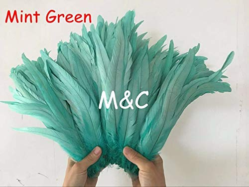 Pukido 240pcs Mint Green Rooster Tails Feather 30-35cm/12-14inch Coque Cock Tail Feather for Wedding&Christmas Decorations - (Color: Light Brown)