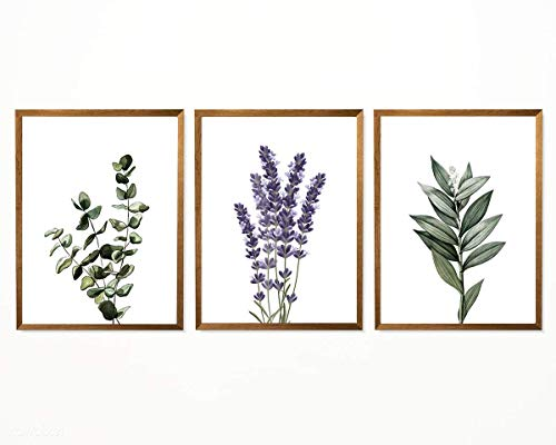 "Botanical Lavender Eucalyptus Print - 8"" x 10"" - Unframed, Watercolor Floral Green Poster, Green Plant Lavender Wall Decor, Farmhouse Home Decor Set of 3 from Hadora"