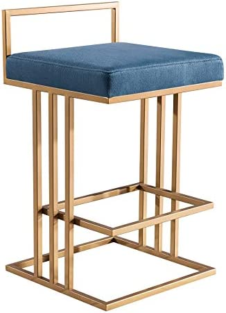 TOV Furniture The Trevi Collection Contemporary Velvet Upholstered Counter Stool