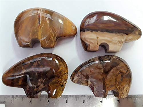 Madagascar Minerals Petrified Wood Fetish Bear Carving