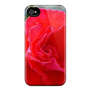 FPwFOSx3456BkKuI ConnieJCole Dew On Rose Feeling Iphone 4/4s On Your Style Birthday Gift Cover Case