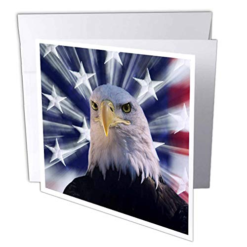 - 3dRose Danita Delimont - America - USA, California. Composite of Bald Eagle and American Flag. - 12 Greeting Cards with envelopes (gc_314647_2)