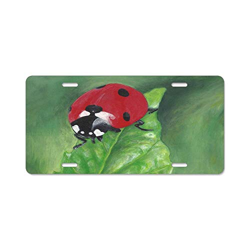 Miss Ladybug Painting Cool License Plate Cover Protect for Any Standard US CA Plates Auto Accessory