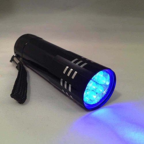 Castnoo UV Light, 9 LED Ultra Violet Blacklight Flashlight keychain, Pet Urine Detector, Dog Stains Remover