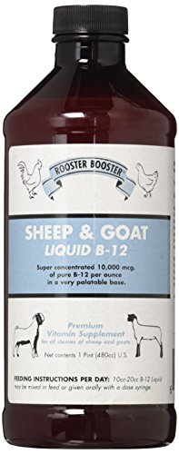 Rooster Booster B-12 Sheep and Goat Liquid, - Booster Rooster