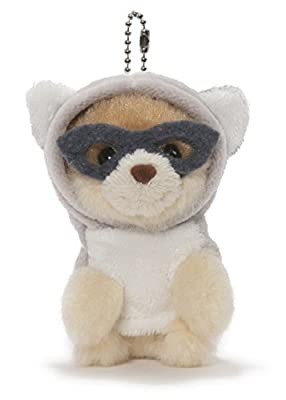 GUND Boo, The World's Cutest Dog - Blind Box Series 2