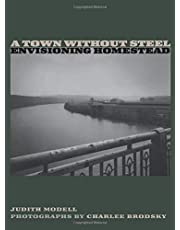 A Town Without Steel: Envisioning Homestead