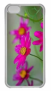 Customized iphone 5C PC Transparent Case - Colorfull 2 Personalized Cover