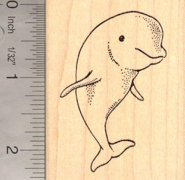 Beluga Whale Rubber Stamp, Marine Wildlife