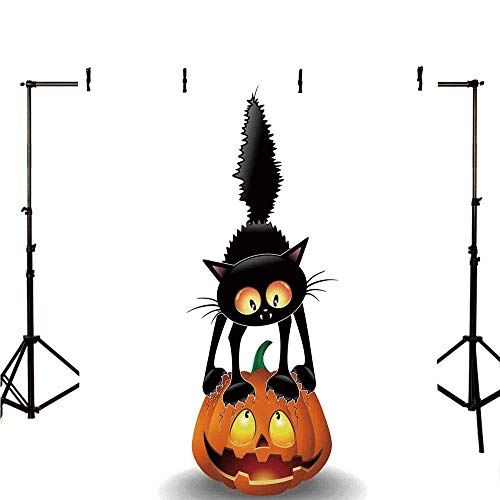 Halloween Decorations Stylish Backdrop,Black Cat on Pumpkin Spooky Cartoon Characters Halloween Humor Art for Photography,78.7