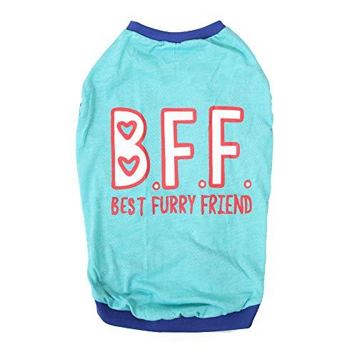 Choostix Choostix Summer Dog T-Shirt, BFF, Sky Blue, 26