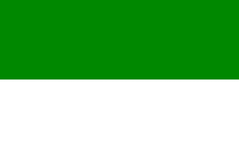 Amazon.com : magFlags Large Flag San Vicente del raspeig ...