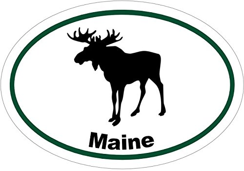 WickedGoodz Oval Maine Moose Vinyl Decal - ME Bumper Sticker - Perfect Maine Vacationer Gift