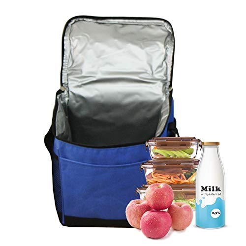 Excursion Cooler Picnic (YXTY Collapsible Insulated Lunch Cooler Bag for Picnic Camping/School/Travel/Sports, Leak Proof, 15 Liter, Navy Blue)