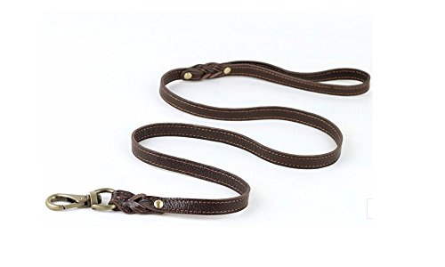Strimm 4ft Quality Soft Genuine Real Braided Classic Leather Pet Dog Leash for Training Walking Show with Quick Easy Metal Clip- Small Puppy Canine Dogs Cats, Brown by Strimm