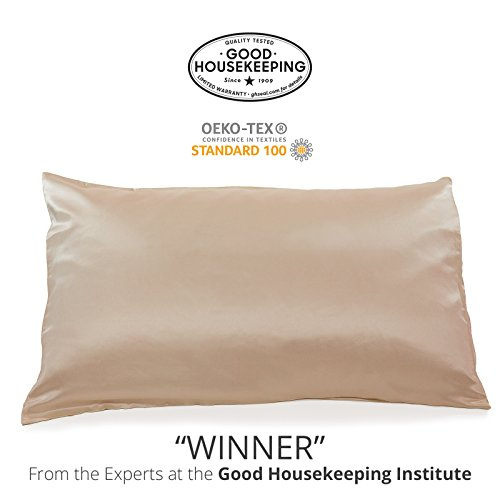 Fishers Finery 25mm 100% Pure Mulberry Silk Pillowcase Good Housekeeping 'Winner' (Taupe, Q)
