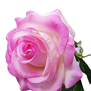 Miaomiaogo Lifelike Simulation Single Stem Artificial Fake Flower Rose Bouquet Home Wedding Decoration 70