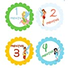 Monthly Stickers Baby Month Stickers Baby Girl Monthly Stickers Tinkerbell Monthly Stickers Fairies Scalloped Circles Fairy Disney Stickers