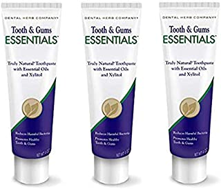 product image for Dental Herb Company - Essentials Toothpaste (4 oz.) Fluoride-Free & Antimicrobial for Whole Mouth Protection (3 Pack)
