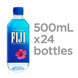 FIJI Natural Artesian Water, 16.9 Fl Oz (Pack of 24)