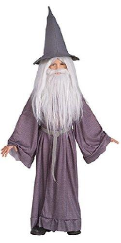 Big Beard Costume (Gandalf the Grey Child Costume - Large)