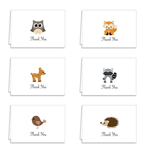 Cute Woodland Animals Thank You Cards - 12 Cards & Envelopes - Owl, Fox, Raccoon, Deer, Bird and Porcupine