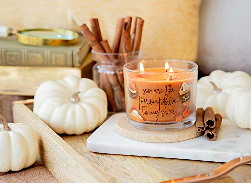 """Aromascape Pumpkin to My Spice, 3-Wick Scented Candle, Orange - Perfect gift idea for a special occasion 11-Ounce 3-wick candle, approximate burn time of 30-40 hours Scented candle with """"You are the Pumpkin to my Spice"""" labeled on the side - living-room-decor, living-room, candles - 41PugCLCtwL -"""