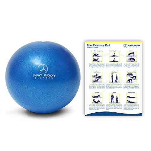 ProBody Pilates Mini Exercise Ball – 9 Inch Small Bender Ball for Stability, Barre, Pilates, Yoga, Core Training and…
