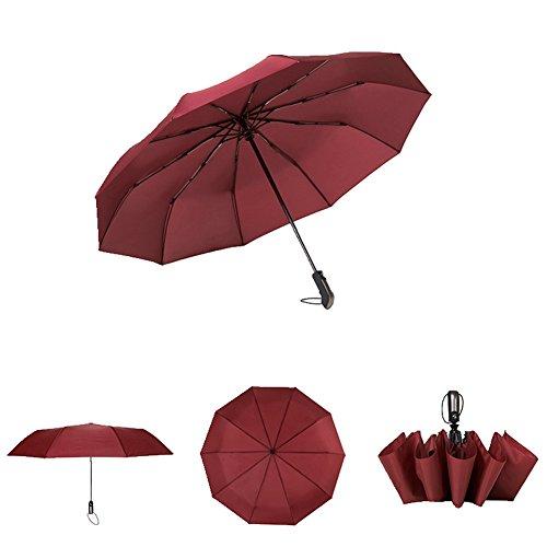 Auto Folding Umbrellas Windproof Open Close Slip-Proof Handle,Compact Lightweight Carrying for Travel Rain Sun - Open Blizzard Beach